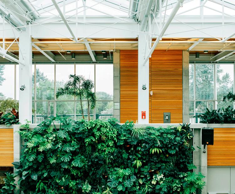 interior-casa-balcon