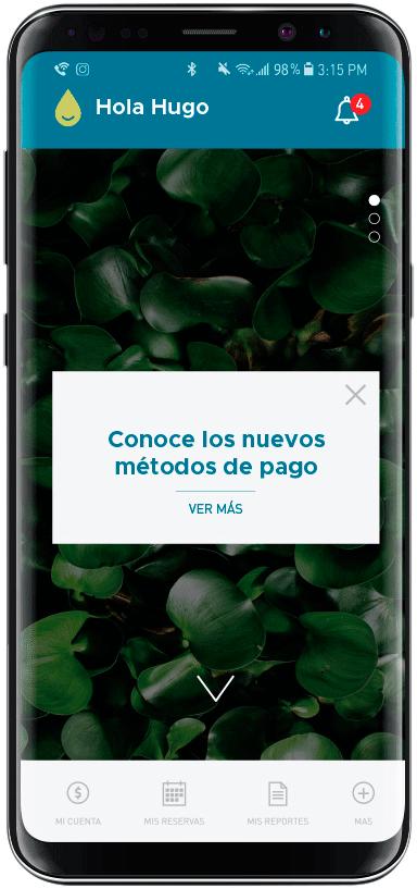 lemon-app